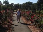 Bev admiring Mable's rose garden