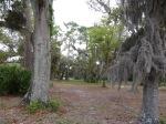 Landscaped bike trail of Jekyll Island, GA