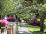 Beautiful street walking in Southport
